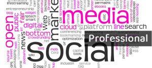 Gestión de redes sociales: Plan Professional